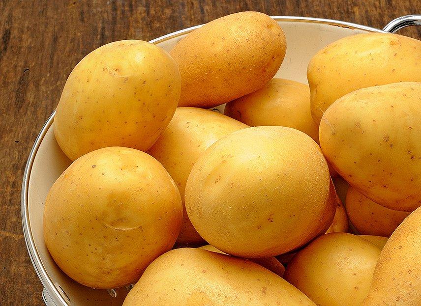 Kartoffel-Marketing GmbH - Kartoffelkauf leicht gemacht